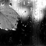 Осень, ты грустные мысли ко мне приносишь,