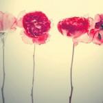 учись прощать…ты тоже далеко не идеал)…