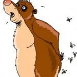 Медведь и Пчёлы. Басня