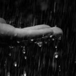 на твоих руках капли дождя,