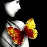 Счастье подобно бабочке. Чем больше ловишь его, тем больше оно ускользает. Но если вы перенесете сво…