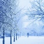 Зима зимняя…