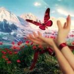 Стихи о жизни — это, прежде всего, позиция и ощущения… От радости до грусти. «Земля моя, где ветры…