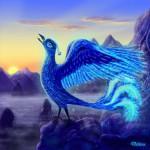 Вселенная птица
