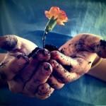 Человека можно вытащить из грязи, но нельзя вытащить грязь из человека…….