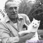 По всей видимости, существует какая-то мистическая связь литературного таланта с любовью к кошкам