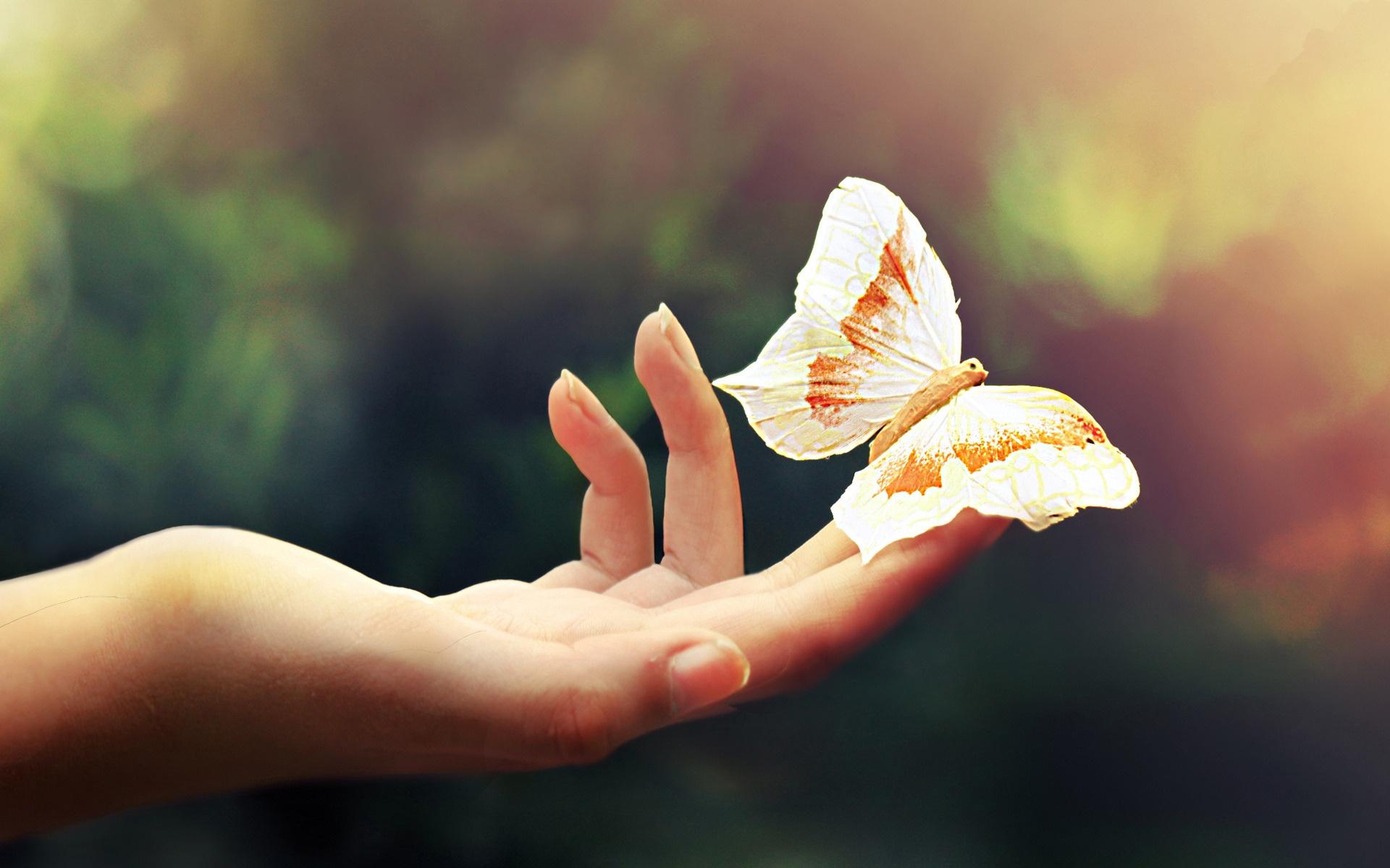 Бабочка на пальце руки