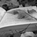 9 самых лучших психологических романов мира