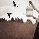 А птицей стать я не хотел бы,