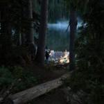 Недавно этой просекой лесной