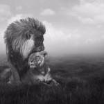 Сидели рядом как-то бык со львом.