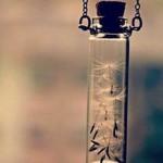 Закипает сироп — в медный таз
