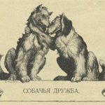 Дружба двух собак по басне Крылова