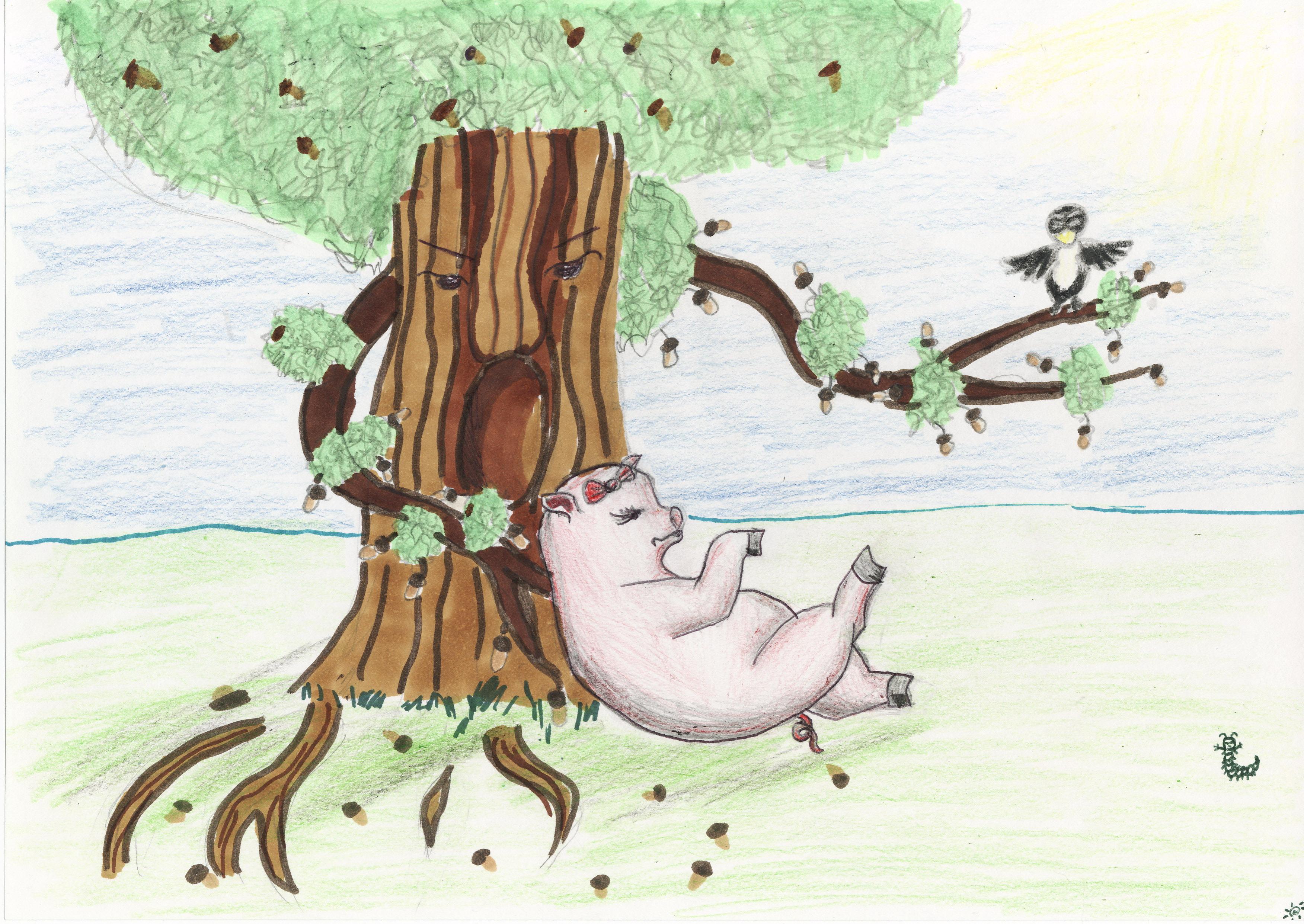Раскраска свинья под дубом картинки